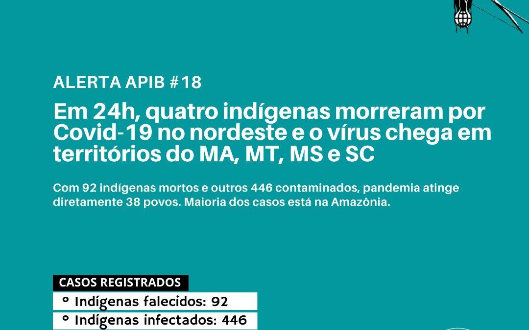 Em 24h, quatro indígenas morreram por Covid-19 no nordeste e o vírus chega em territórios do MA, MS e SC